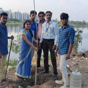 Tree Sapling Plantation